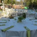 קייטרינג לחתונה בטבע – מה מומלץ להזמין?